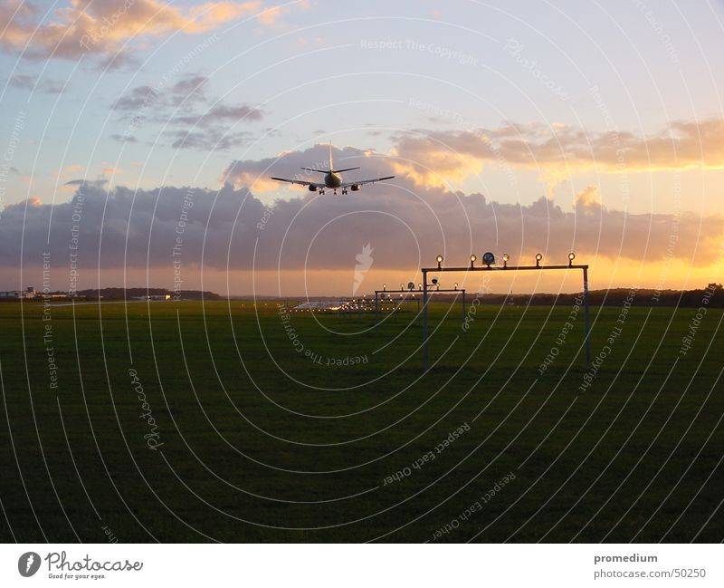 Landeanflug Ferien & Urlaub & Reisen Flugzeug Flughafen Flugzeuglandung Abenddämmerung Landebahn Passagierflugzeug Landebahnbefeuerung
