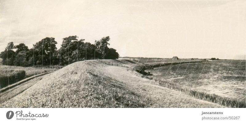 Sturm an der Eider um 1910 Wasser Herbst Fluss