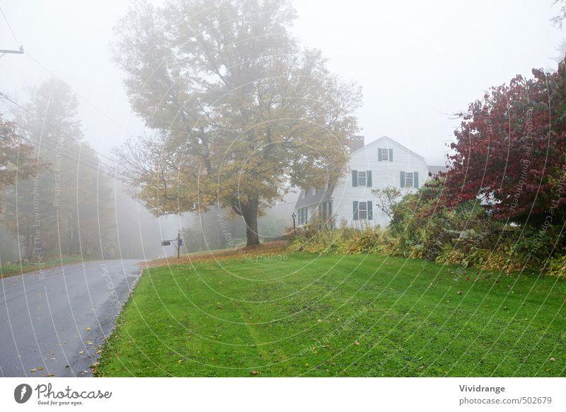 Nebliger Roadtrip Ausflug Häusliches Leben Haus Garten Hausbau Landschaft Herbst schlechtes Wetter Nebel Baum Einfamilienhaus Briefkasten Verkehrsmittel Straße