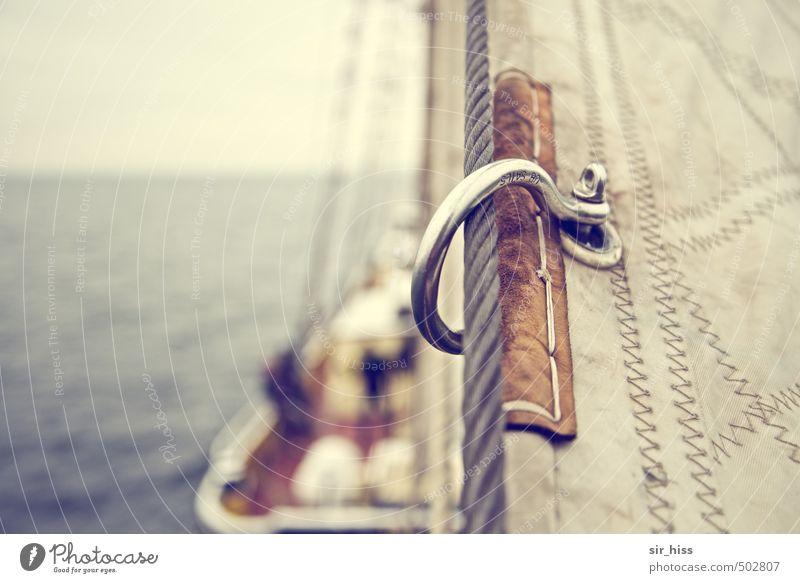 halbseiden Segeln Ostsee Schifffahrt Kreuzfahrt Bootsfahrt Passagierschiff Segelschiff An Bord Tauziehen Freude Kraft Romantik Schoner Klüver Seil Schäkel Meer