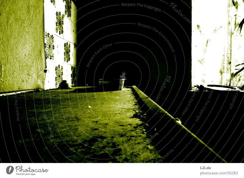 Green Room V grün schwarz weiß Licht Fenster dunkel gruselig Wand Haus Raum Bodenbelag Küche Teller Blume Am Rand Zerstörung alt Kontrast Einsamkeit Glas