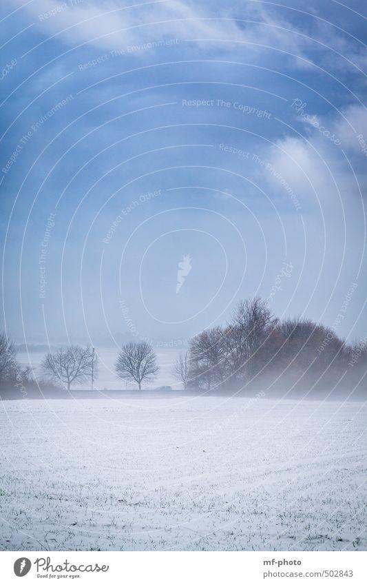 Winterlandschaft Natur blau weiß Schnee Eis Nebel Frost