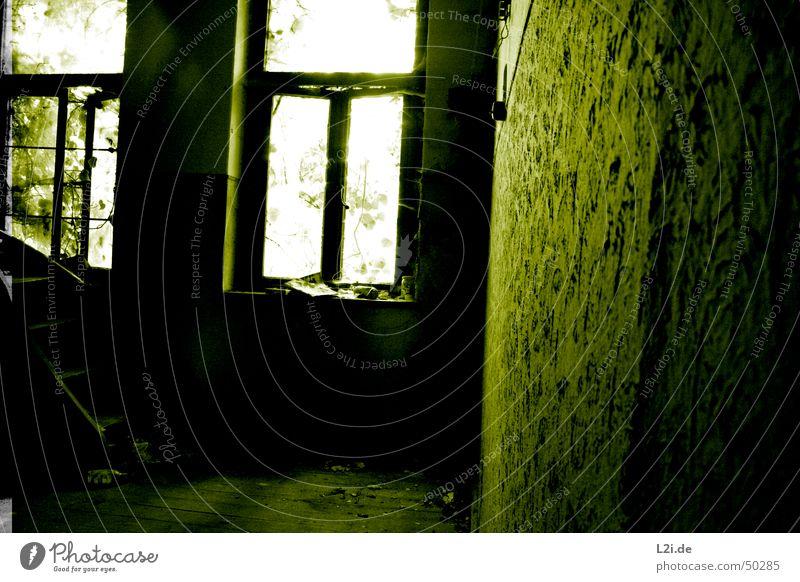 Green Room VII grün schwarz weiß Licht Fenster dunkel gruselig Wand Haus Raum Bodenbelag Zeitung Blatt Baum Zerstörung alt Kontrast Einsamkeit Glas dreckig