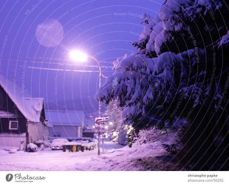winterzauber weiß blau Baum Winter Haus kalt Schnee Wege & Pfade Romantik violett Dorf Tanne Straßenbeleuchtung Märchen Surrealismus schlechtes Wetter
