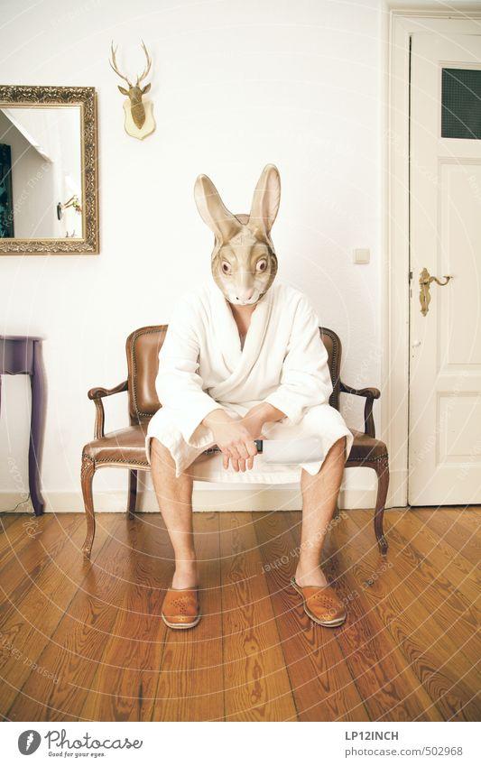 AGGRO.HASE II Mensch Jugendliche Mann Tier Junger Mann 18-30 Jahre Erwachsene Gefühle Innenarchitektur Angst maskulin Wohnung Häusliches Leben sitzen