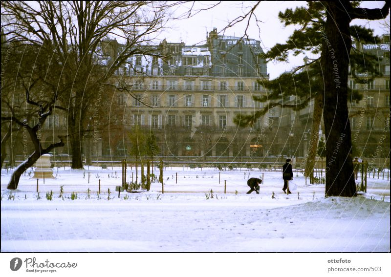 Paris im Januar Winter Schnee Park