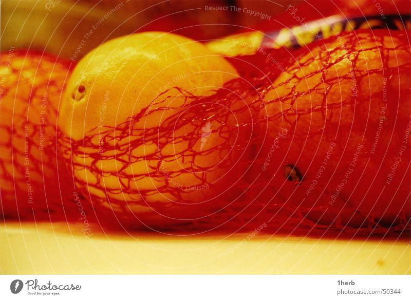 orange Vitamin Winter Gesundheit Frucht ornage