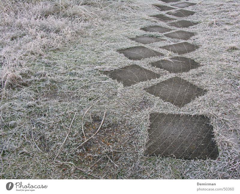 Der Weg ins... Winter Einsamkeit kalt Wiese Gras Stein Wege & Pfade gehen laufen Frost Bürgersteig anonym fremd Rätsel ungewiss Bodenplatten