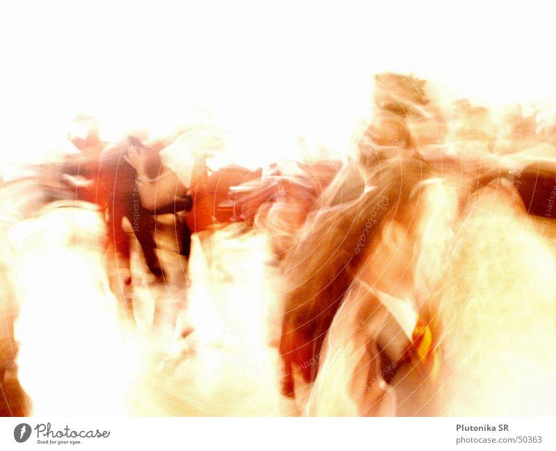 Wild Waltz Licht rot Mensch Unschärfe gold hell Wildtier Tanzen dancing blurry