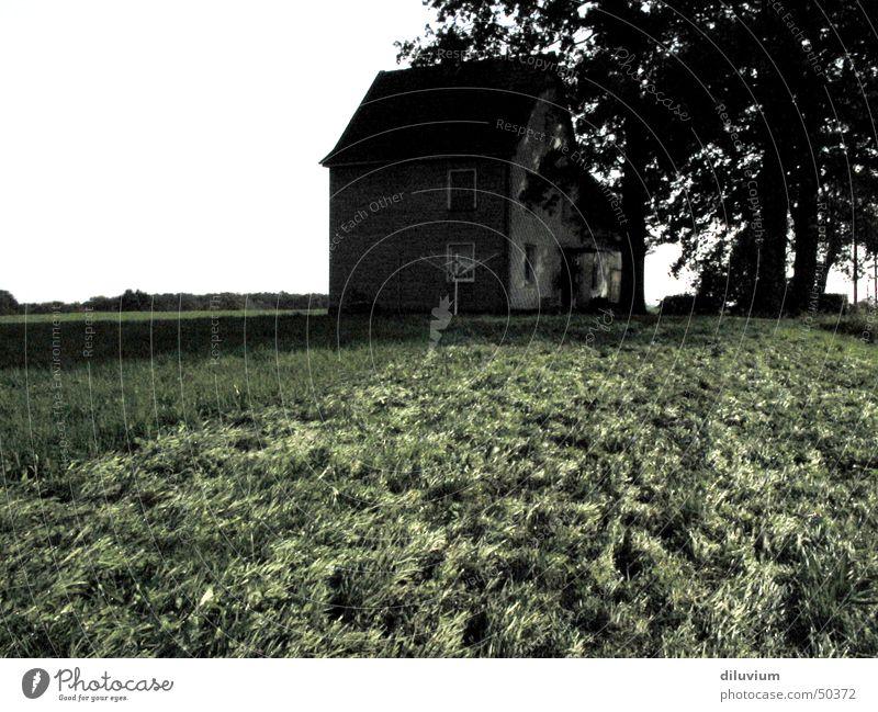 isolation Baum Haus Einsamkeit dunkel Wiese