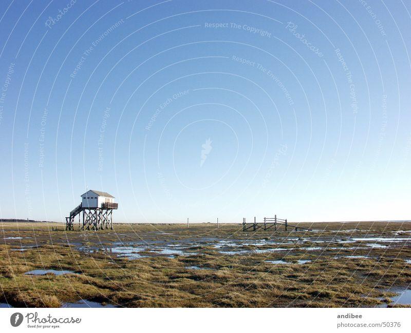 lonely in StPeterOrding Himmel blau ruhig Einsamkeit kalt nass Schönes Wetter Nordsee November