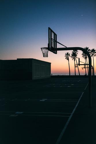 Venice Beach Sport Basketballplatz Landschaft Wolkenloser Himmel Sonnenaufgang Sonnenuntergang Pflanze Palme Coolness trendy Wärme Horizont Tourismus Sportplatz