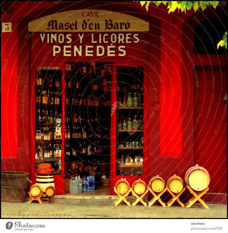 Vinos y Licores, Vilafranca del Penedés, Catalunya rot Spanien Wein Ladengeschäft Flasche Eingang altehrwürdig Schaufenster Lebensmittel Getränk Alkohol Katalonien Weinfass
