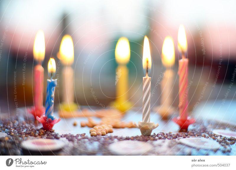 beschränkt geschäftsfähig Freude Glück Feste & Feiern Party Kindheit Dekoration & Verzierung Geburtstag Fröhlichkeit Ernährung Kochen & Garen & Backen Kerze blasen Überraschung brennen Begeisterung Vorfreude