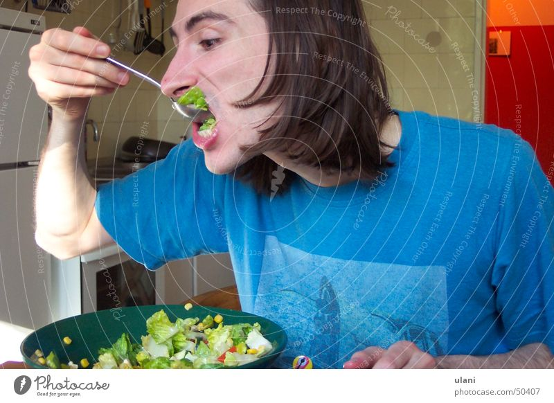 die Salatgier Mann Sommer Ernährung verrückt Küche Appetit & Hunger brünett Salat Gemüse Gier