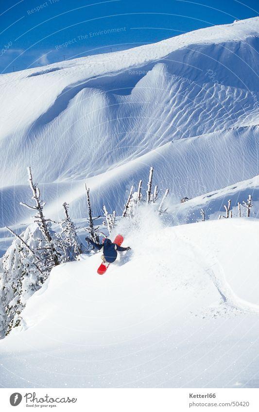 freeride_2005 Snowboard Wintersport Tiefschnee Freestyle Schneelandschaft Snowboarding Trick Schönes Wetter Nadelbaum 1 abwärts Winterstimmung Wintertag rot