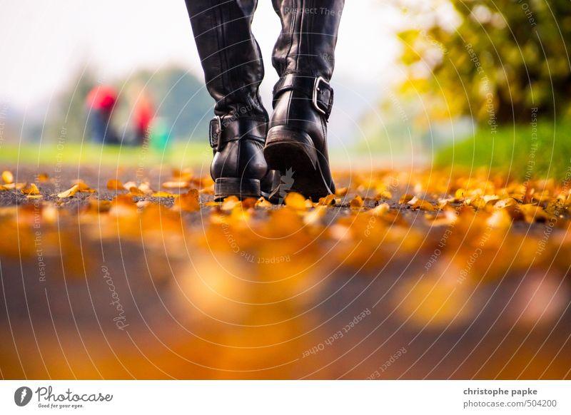 Herbstspaziergang Erholung Spaziergang feminin 1 Mensch Blatt Park Leder Stiefel gehen Freizeit & Hobby Lebensfreude Herbstlaub herbstlich Herbstbeginn Farbfoto