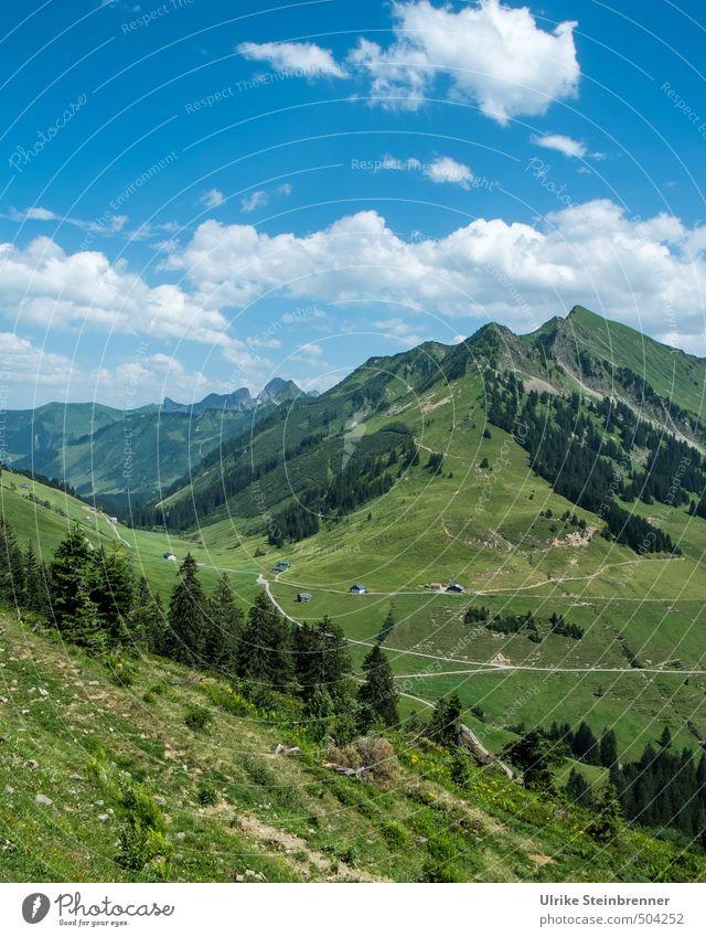 Bergsommer 1 Ferien & Urlaub & Reisen Tourismus Sommerurlaub Berge u. Gebirge wandern Umwelt Natur Landschaft Pflanze Himmel Wolken Schönes Wetter Baum Gras