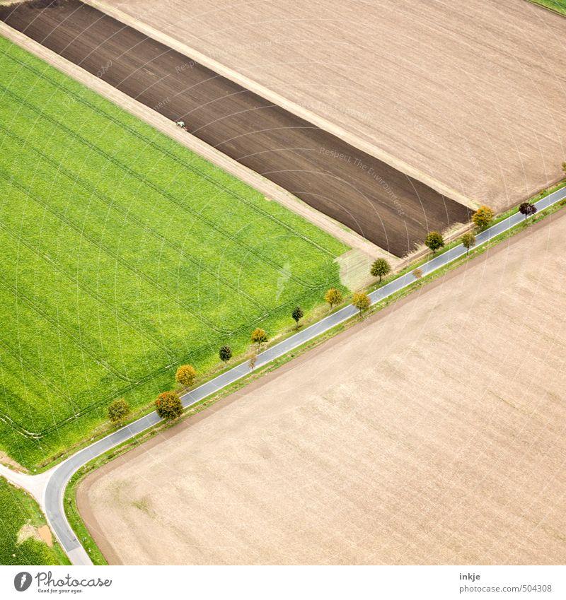 oben links wird gearbeitet Landwirtschaft Forstwirtschaft Ackerbau Umwelt Landschaft Erde Sommer Herbst Baum Feld Stadtrand Menschenleer Verkehr Verkehrswege