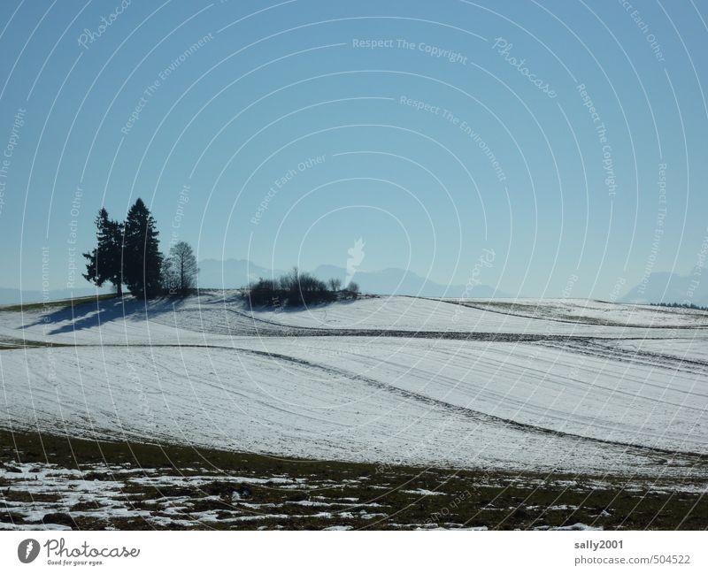 so darf der Winter kommen... Natur blau weiß Baum Erholung Einsamkeit Landschaft ruhig Ferne kalt Berge u. Gebirge Schnee natürlich Horizont Eis