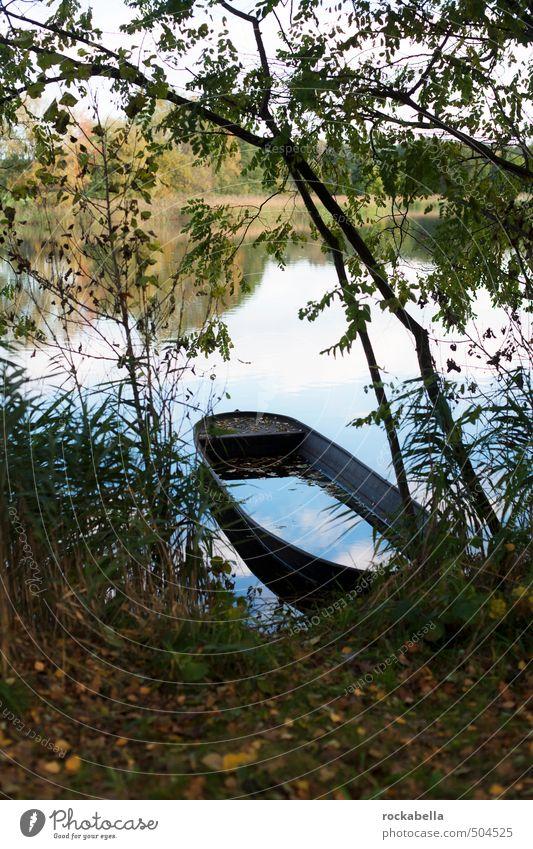 Boot auf Teich Umwelt Natur Herbst Baum Seeufer Wasserfahrzeug Zufriedenheit Gedeckte Farben Außenaufnahme Menschenleer Schwache Tiefenschärfe
