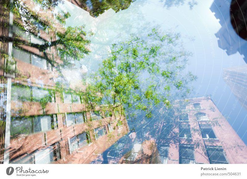 Revisit   8 Umwelt Natur Urelemente Himmel Wetter Pflanze Baum Wald Stadt Haus Hochhaus Bauwerk Gebäude chaotisch einzigartig Freizeit & Hobby geheimnisvoll