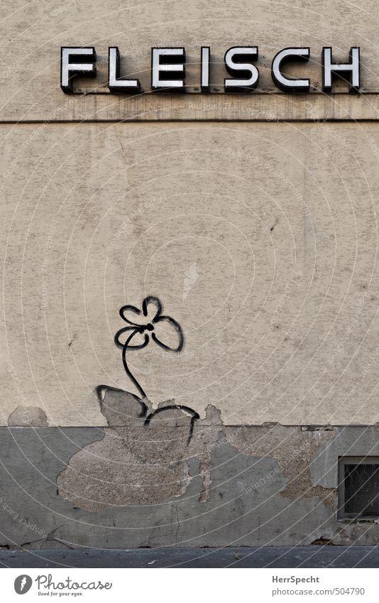 Fleischblume Wien Altstadt Haus Gebäude Mauer Wand Fassade Schriftzeichen Graffiti alt kaputt trashig trist Stadt braun grau Blume Metzgerei Putz Leuchtreklame