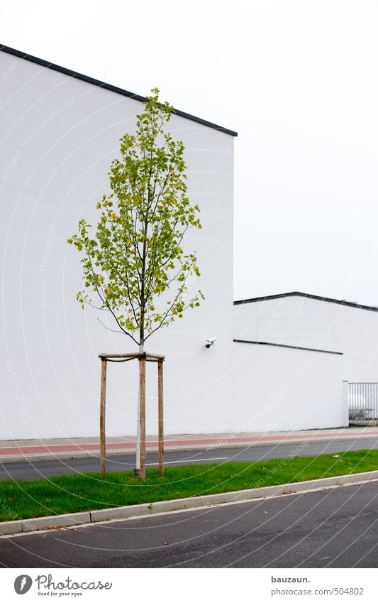 >. Wirtschaft Industrie Himmel Baum Gras Stadt Industrieanlage Fabrik Bauwerk Gebäude Architektur Mauer Wand Fassade Verkehrswege Personenverkehr Straße