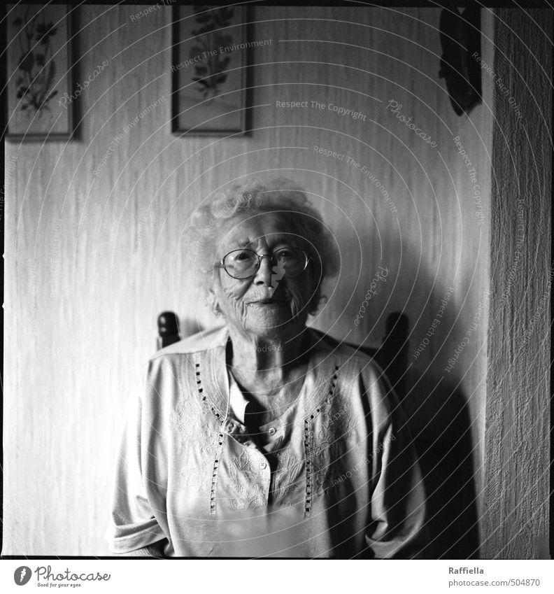 fröhlich Mensch feminin Frau Erwachsene Weiblicher Senior Kopf Gesicht 1 60 und älter Bluse Brille weißhaarig kurzhaarig Locken beobachten Kommunizieren Lächeln