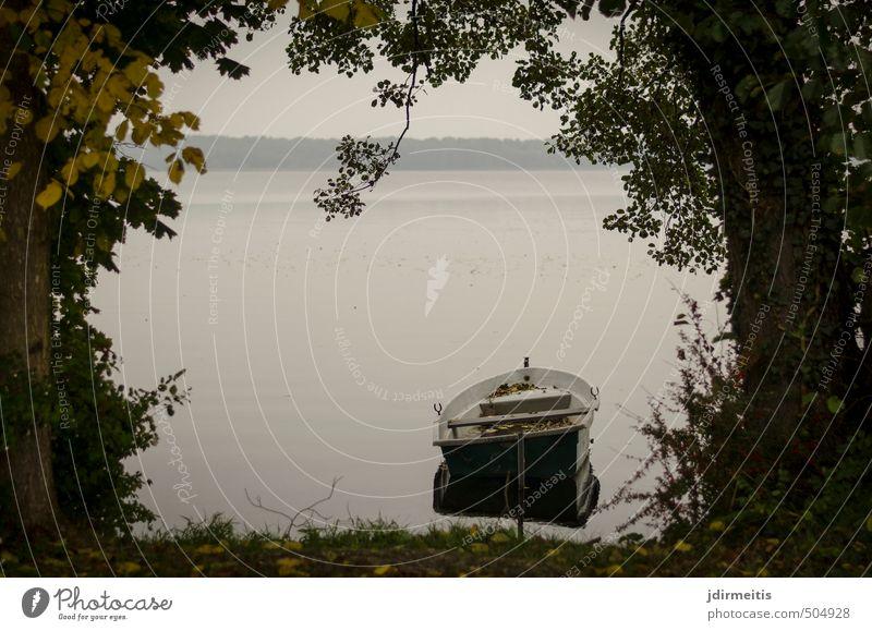 Liegeplatz Freizeit & Hobby Ferien & Urlaub & Reisen Ausflug Umwelt Natur Landschaft Wasser Herbst Wetter Baum Gras Sträucher Seeufer Ruderboot grau