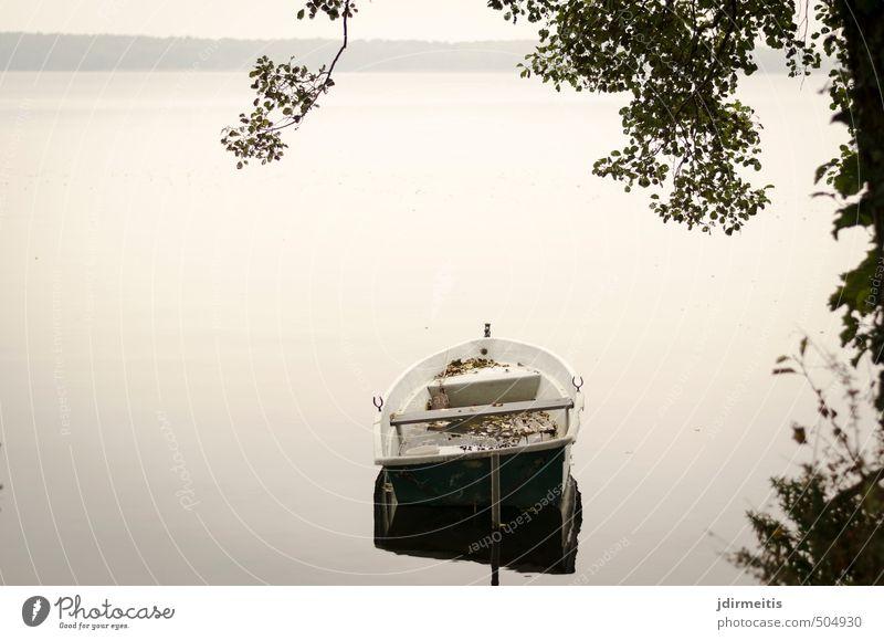Liegeplatz Ferien & Urlaub & Reisen Ausflug Natur Landschaft Wasser Himmel Herbst Seeufer Bootsfahrt Ruderboot grau Zufriedenheit Farbfoto Außenaufnahme Tag