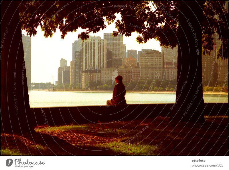 Herbst in Chicago Frau ruhig Erholung Park Mensch Architektur