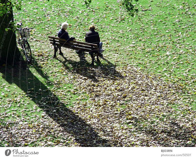 chill-out-lounge Reichtum Erholung Ferien & Urlaub & Reisen sprechen Ruhestand Mensch Mann Erwachsene Paar Senior Herbst Baum Gras Blatt Park Wiese alt kalt