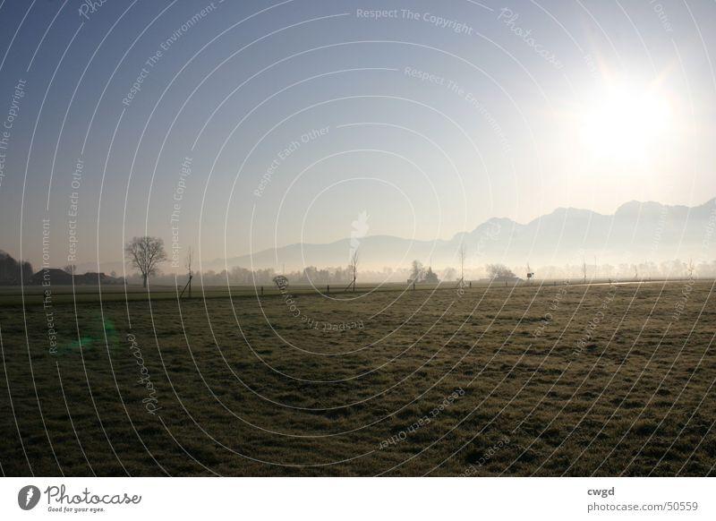 sun comes up, v3.0 Morgen Feld Sonnenaufgang Schweiz Österreich Rheintal Ebene ländlich kalt Außenaufnahme Berge u. Gebirge Blauer Himmel Alpen Frost bodenfrost