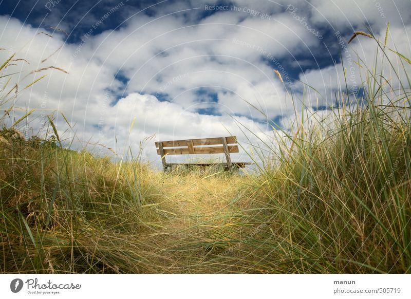 Pausengelände Erholung ruhig Natur Luft Himmel Gras Sträucher Wiese Hügel Holzbank natürlich Ferien & Urlaub & Reisen Idylle Perspektive Farbfoto Außenaufnahme