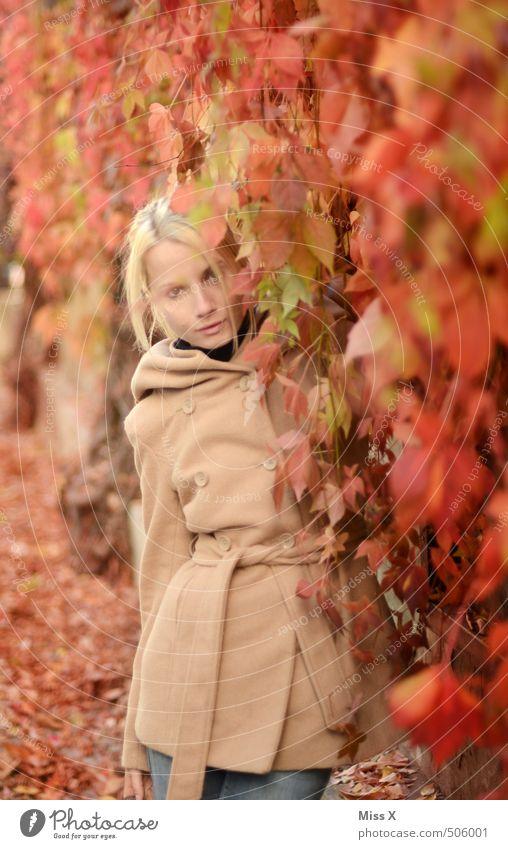 Roter Wein Mensch Frau Natur Jugendliche schön rot Blatt 18-30 Jahre Erwachsene Gefühle feminin Herbst Haare & Frisuren Mode Stimmung blond