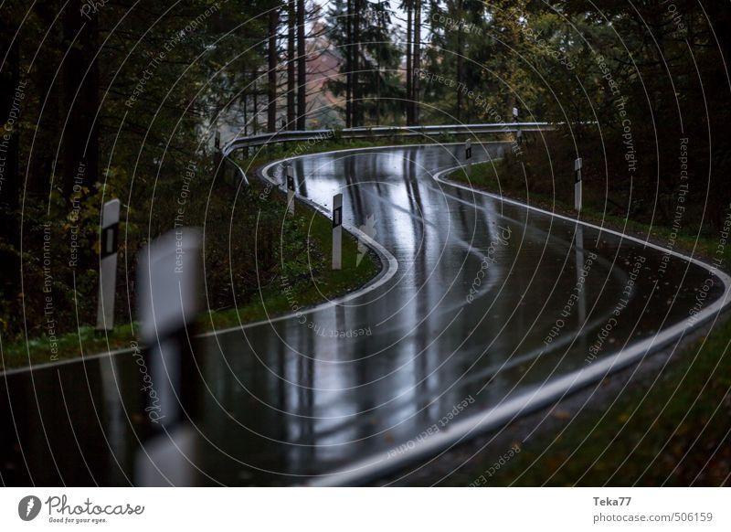Herbstkurve Ferien & Urlaub & Reisen Umwelt Natur Landschaft Pflanze schlechtes Wetter Unwetter Regen Gewitter Baum Verkehr Verkehrsmittel Verkehrswege