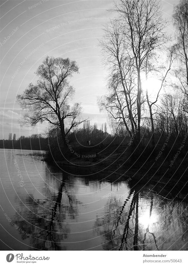 Der Winter kommt von da hinten... weiß Baum Winter schwarz Herbst See Landschaft