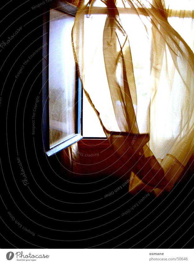 Wind schwarz Fenster Luft Stoff Vorhang Gardine wehen