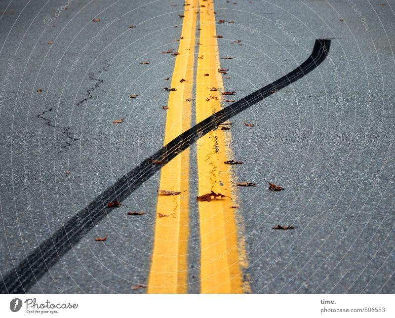 Elchwanderung Verkehr Verkehrswege Straßenverkehr Autofahren Wege & Pfade Mittelstreifen Bremsspur Reifenspuren Asphalt außergewöhnlich einfach Geschwindigkeit