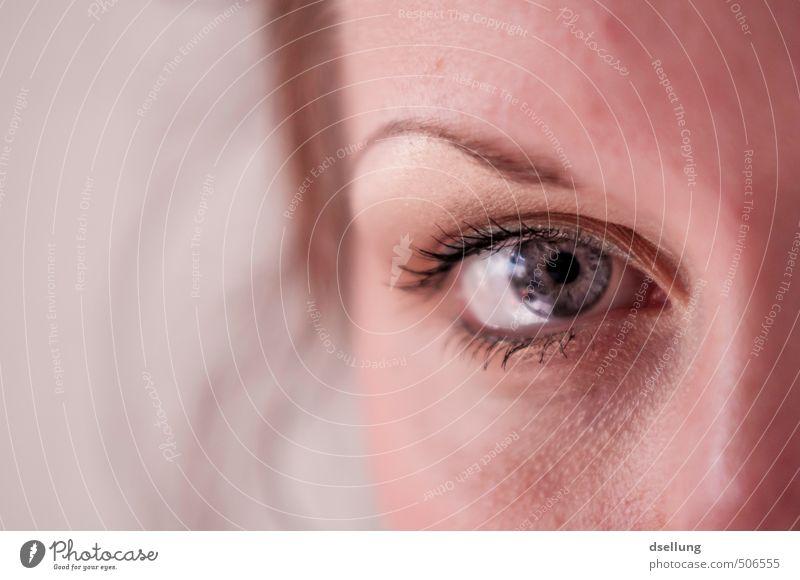 Augenkontakt Mensch Jugendliche schön weiß Junge Frau rot ruhig 18-30 Jahre Erwachsene Gesicht feminin rosa orange Haut einfach