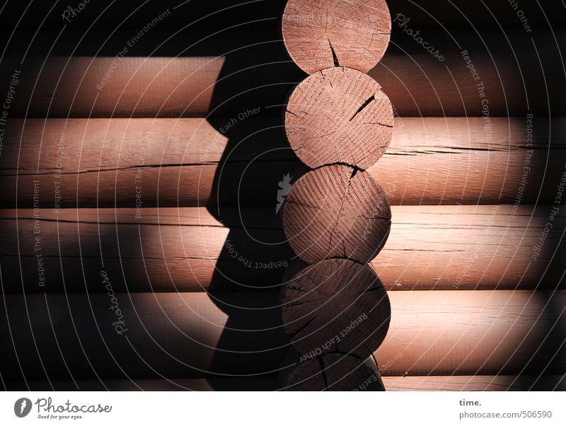 Dicke Bretter Schönes Wetter Kernholz Baumstamm Haus Hütte Bauwerk Gebäude Holzhaus Konstruktion Bauweise dick fest rund Ewigkeit Ordnung Präzision Schutz