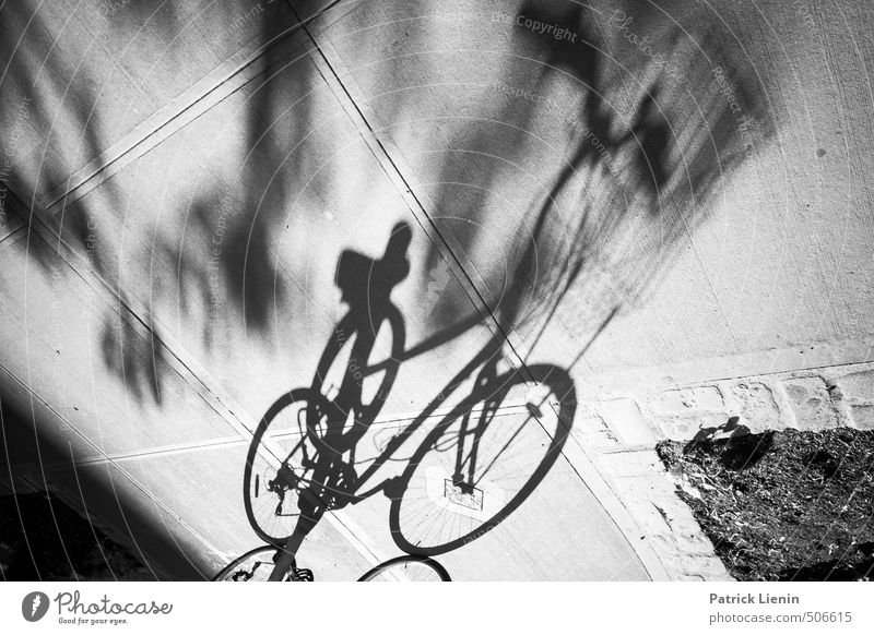 Bike me ... Ferien & Urlaub & Reisen Stadt Erholung Einsamkeit Freiheit Stil Gesundheit Freizeit & Hobby Lifestyle Fahrrad Tourismus ästhetisch Ausflug Coolness Abenteuer Freundlichkeit
