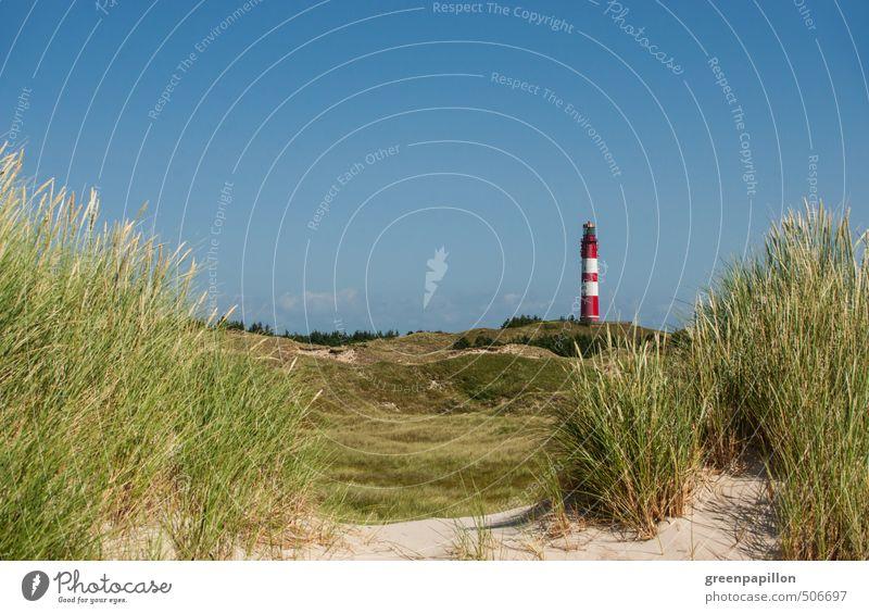 auf die Insel Ferien & Urlaub & Reisen Tourismus Ausflug Sommerurlaub Strand Meer Fahrradfahren Joggen wandern Umwelt Natur Landschaft Küste Nordsee Amrum