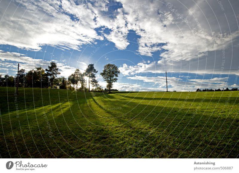 lange Schatten Himmel Natur blau grün weiß Pflanze Sommer Sonne Baum Landschaft Wolken schwarz Wald dunkel Umwelt Wärme