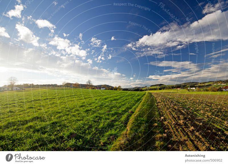Hügelland 2 Umwelt Natur Landschaft Pflanze Himmel Wolken Horizont Sommer Wetter Schönes Wetter Wärme Baum Gras Wiese Feld Wald Mühlviertel Österreich Haus blau
