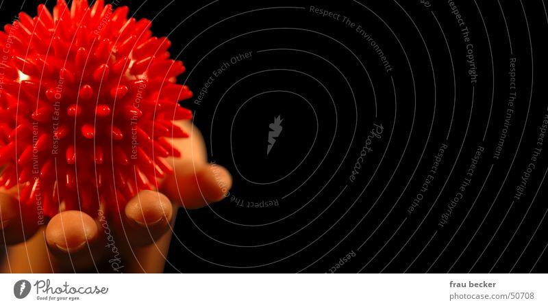 igel Hand rot schwarz Ball rund Spitze Kugel Massage Stachel Behandlung Igel