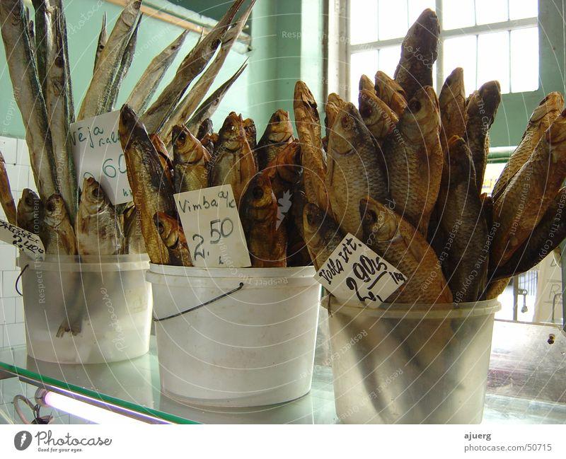 Stockfisch | Getrocknete Fische Markt Lettland Riga Kabeljau Trockenfisch