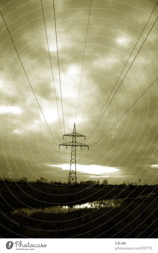 Der Untergang Natur Wasser Himmel weiß Baum Sonne schwarz Wolken See Landschaft braun Feld Rücken Elektrizität gruselig Strommast