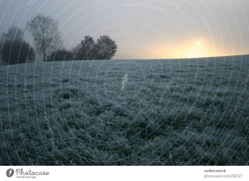 Wintersonnenaufgang gefroren Lichtspiel Raureif